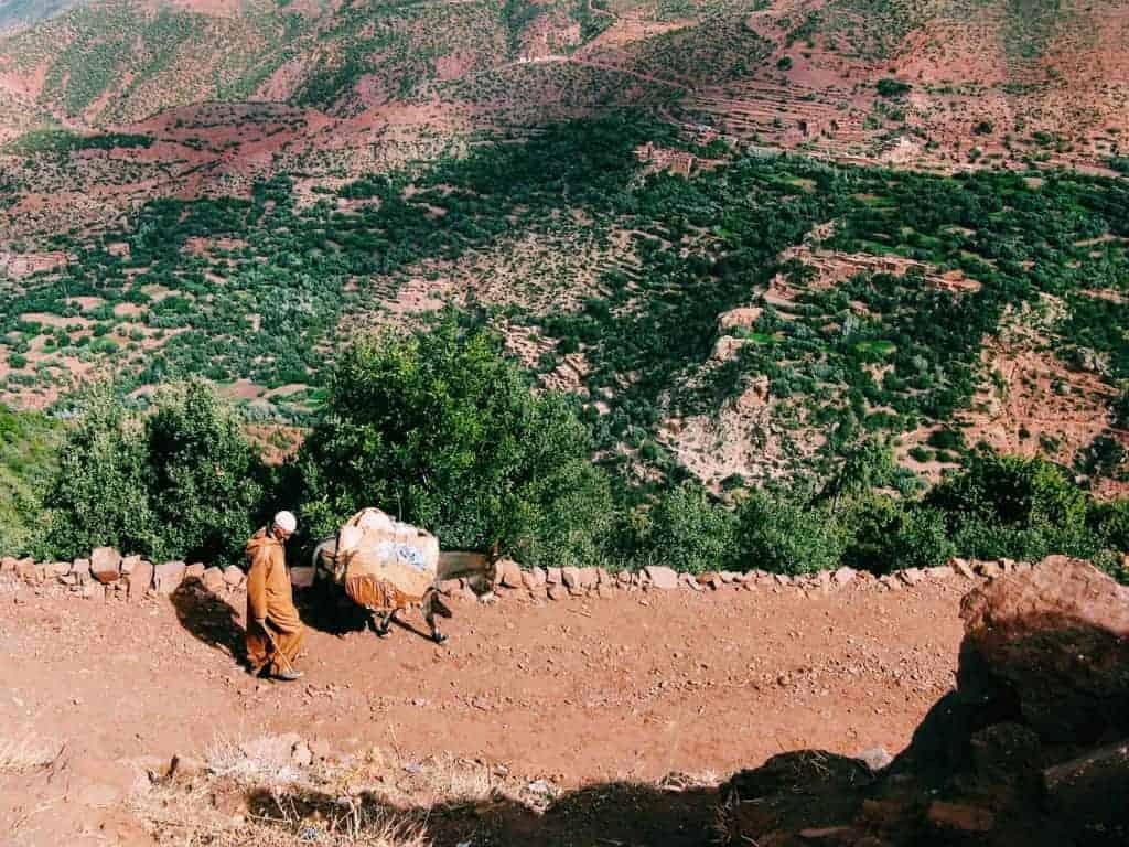 mountain dweller morocco