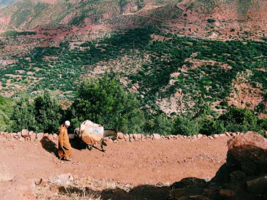 hiking the atlas mountains morocco