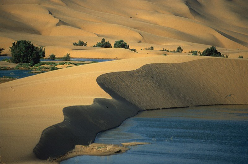 Wild moroccan beach in the desert
