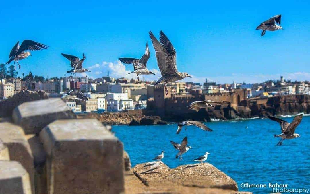 Morocco Coastals Towns