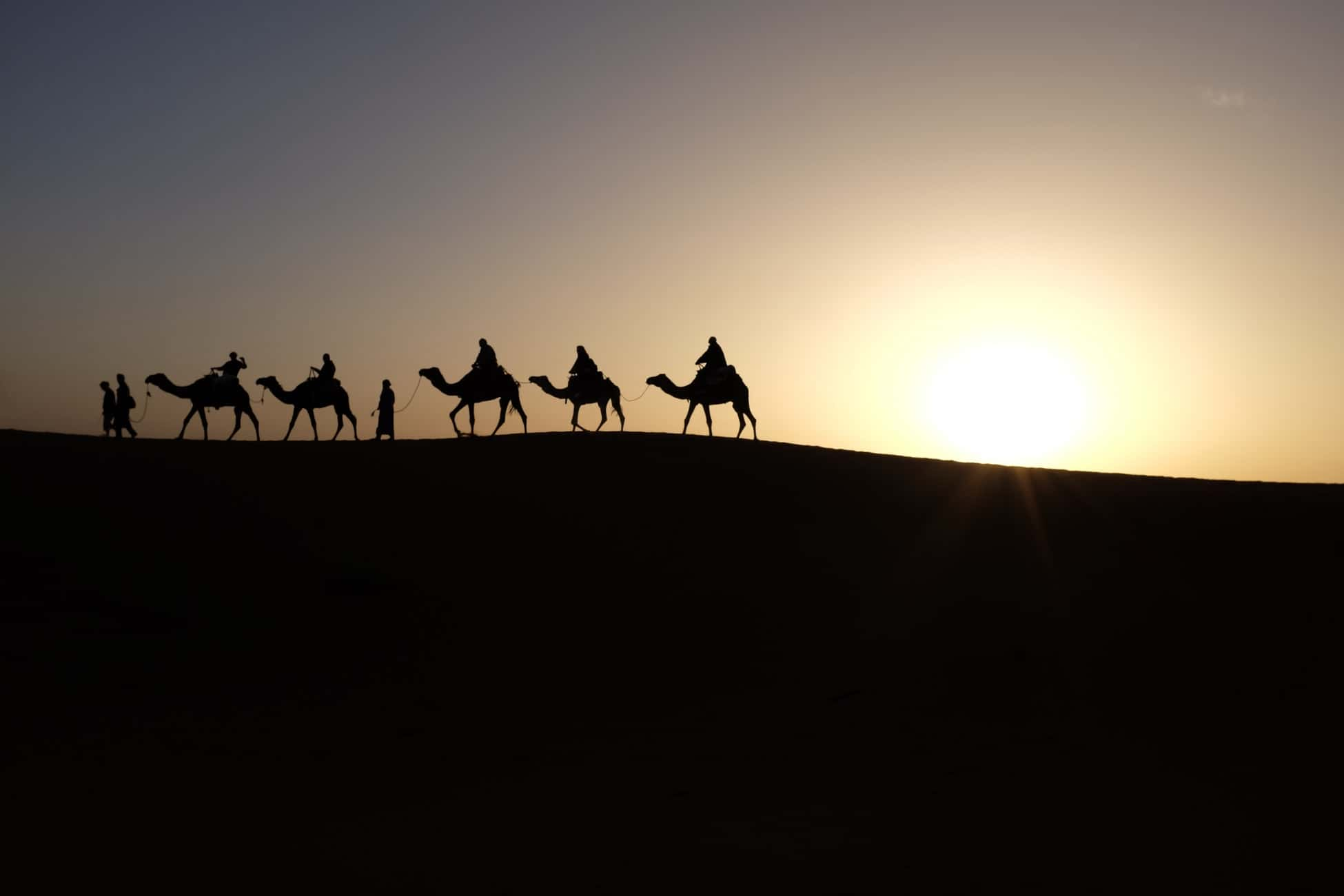 Camels ride in Merzouga desert