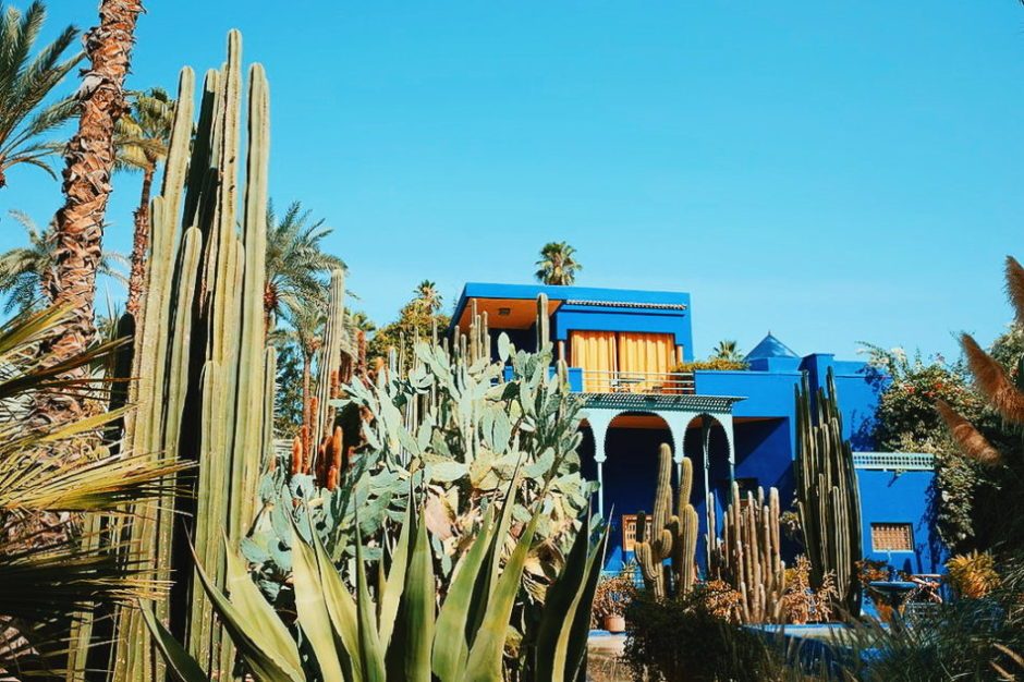 amazing things to do in Marrakech