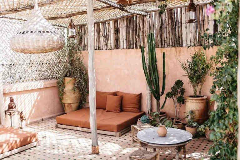 moroccan outdoor plants